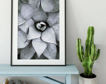 For resell - Beauty Patrickson Printable Digitaler Download Printable Kunst Poster Pflanze