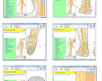 Tutorial for use the acu-point in therapies as massage, acupressure, acupuncture, TNS or laser therapy.
