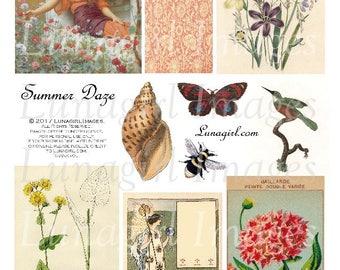 SUMMER DAYS digital collage sheet, DOWNLOAD vintage images, antique ephemera printable art, flowers botanical prints, seashell, bumblebee