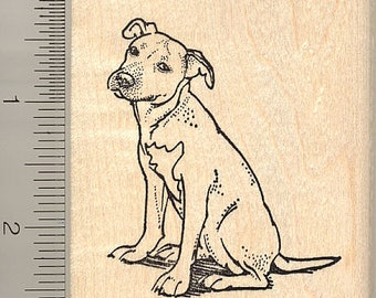 American Pitbull Dog Rubber Stamp K10316 Wood Mounted