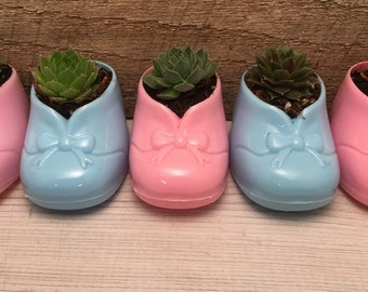Succulent Party Favors, Baby Shower, pink bootie, blue bootie, baby shoe, succulent baby shower favor,  gift for new mother,