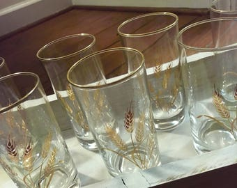 Libbey Gold Wheat Drinking Glasses Water Juice Glasses with Gold Rim
