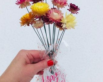 Valentine's Day Flowers, Dozen Wired Strawflowers, Dried Flowers, Strawflowers, Strawflower, Flowers, Supplies, Valentines's Bouquet