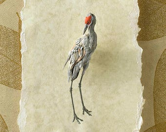 Solitude - Giclee Fine Art Print of Sandhill Crane Paper Sculpture