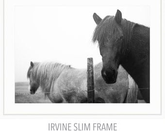 Framed Icelandic Horses in the Rain Print, Black and White Photography, Nature Photography, Horse Photography, Fine Art Print