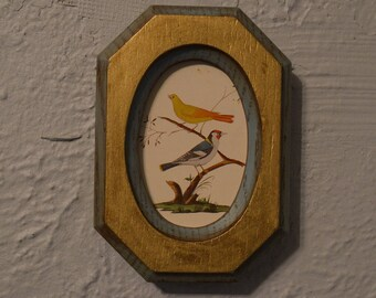 Small Framed Bird Picture