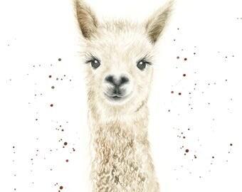 llama print, llama gifts, llama, alpaca wall art, llama art, alpaca print, alpaca gifts, cute animals art, farm animal prints, boho prints