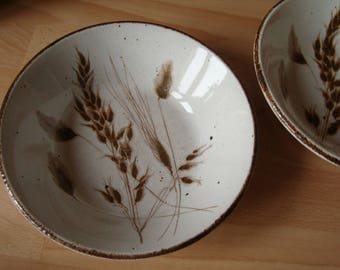 Two Midwinter Stonehenge  'Wild Oats' pattern soup or cereal bowls vintage stoneware 2 dishes 16cms rustic look