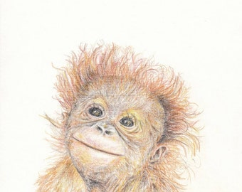 Baby animal print for nursery - Orangutang (digital download)