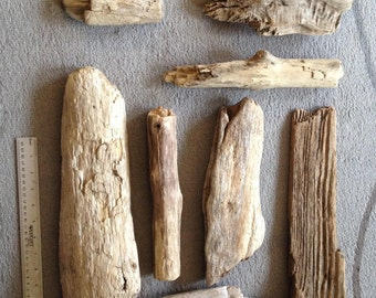Beach Driftwood collected in the Pacific NW - Free Shipping to USA - Lot 2