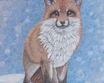 Red Fox in Snow. Personalized Animal Portraits, colored pencil, Pet Portrait colored pencil from photo.