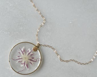 Pressed Purple Phlox Necklace, Pressed Flower Jewelry Botanical, 14k gold fill