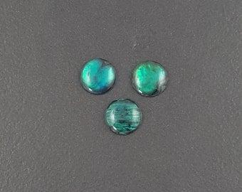 Green Abalone Cabochon, 10mm, calibrated, abalone cab, paua shell cab, green, abalone cabochon, abalone shell, round cabochon,shell cabochon