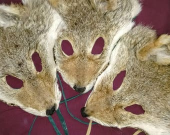 Natural Coyote Masks