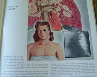 The CIBA Collection of Medical Illustrations  Frank H Netter, MD HC 1948