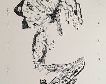 Metamorphosis of Little Wing - Psychedelic Art - Illustration