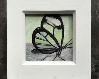 Glasswing Butterfly Painting - Small 7cm x 7cm