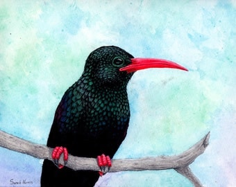 Original Art - Green Wood Hoopoe bird, Watercolor and Pastel