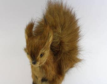 Squirrel with real hair from the 50's Made in Germany