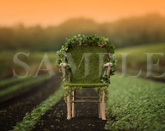 Moss Chair digital backdrops