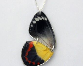 "Jezebel Half Butterfly Pendant on an 18"" Sterling Silver box Chain"
