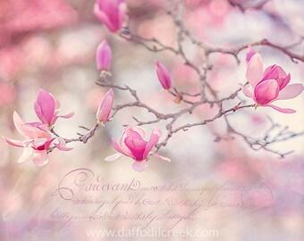 French Country Decor, Shabby Chic Wall Art, Pink Wall Art, Flower Wall Art, French Country Wall Art, Shabby Chic Decor, Magnolia Photo