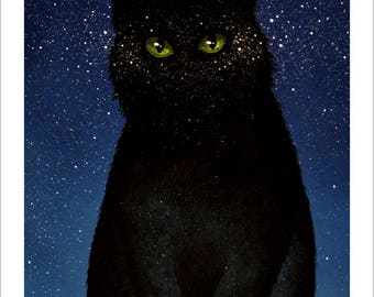 The eyes of the night