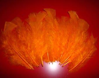 set of 10 feathers orange synthetic