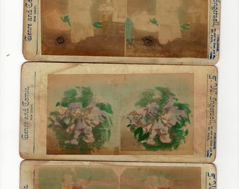 lot of three tinted stereoview cards of a plant, doctor, and lovers