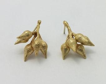 Eucaliptus fruit 14K solid gold earrings, jewelry for women