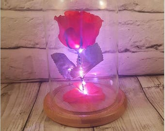 Beauty And The Beast Enchanted Silk Rose in glass dome valentines gift proposal engagement