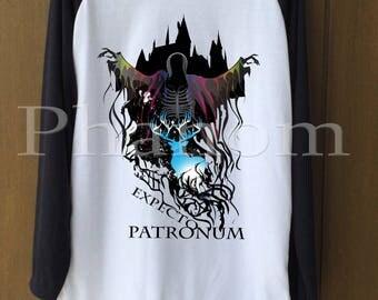 Harry Potter T-shirts, Harry Potter Sweatshirt, Festival Clothing, Holiday T-Shirts, Women tshirts, women shirts, Men's t shirts, men shirts