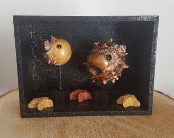 Pufferfish showcase