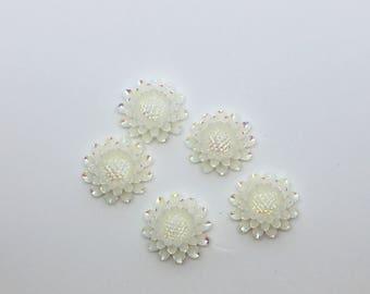 "Set of 6 white sunflower flat back resins, hair bow centers, embellishments, craft supply, 3/4"""
