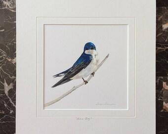 Tree Swallow Original Acrylic Painting, blue bird painting, bluebird art, swallow painting, swallow art, bird art, nature art, woodland art