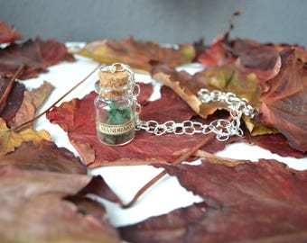 Necklace Potion Bottle