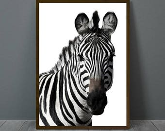 Zebra Print White, Zebra Wall Decor, Zebra Poster, Zebra, Animal Print Wall Decor, Zebra Wall Art, Zebra Nursery Print