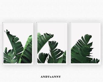Set of 3 Banana Leaf Prints, Digital Download Print, Tropical Print Set, Printable Sets, Set of 3 Print, Succulent Print, Set of 3 wall art