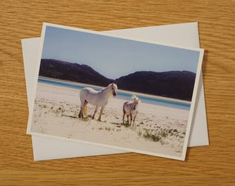 Scottish Landscapes Greetings Card - A6 - Luskentyre Ponies - Blank Card - Any occasion