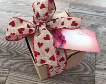 Succulent Gift - Single Succulent Gift Box