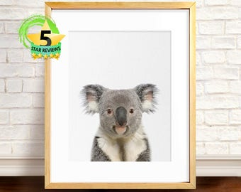 Koala Print, Cute Animal Print, Printable Aall Art, Baby Room Print, Animals Print, Baby Girl Print, Animal Print Nursery, Koala Wall Art