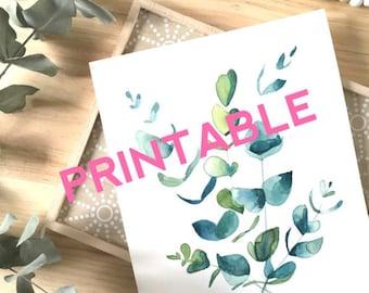 Rama de eucalipto para imprimir acuarela verde