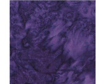 Spacious Skies #1 - Clothworks Fresh Botanica III (CLTFB01-28)