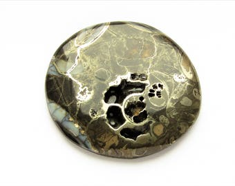 Ammonite cabochon 44x46x3 mm