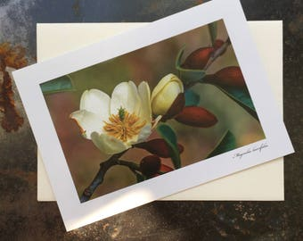 Magnolia Photograph Card | Magnolia Prints | Magnolia Art | Natural Art Prints | Flower Art | Magnolia Picture | Magnolia Print Blank Card |