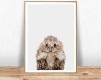 Hedgehog Print, Hedgehog Poster, Hedgehog Wall Art, Hedgehog Art, Nursery Animal Print, Woodland Nursery, Cute Animal Print, Baby Room Decor