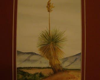 Single yucca plant-8X10 original watercolor painting