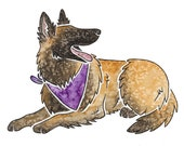 "TERVUEREN - Original 10x8"" mounted watercolour and ink picture of a Belgian Shepherd dog, by Yorkshire artist Jess Chappell"