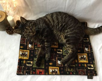 Kitty Cat Mat - Cabin Critters