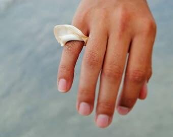 Natural New Zealand Sea Shell Ring / Mermaid Jewelry / Shell Jewelry / Shell Ring / Eco-friendly / Boho Jewelry